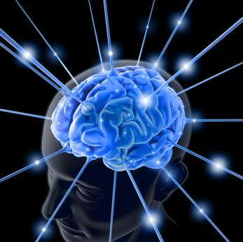 mozak slika