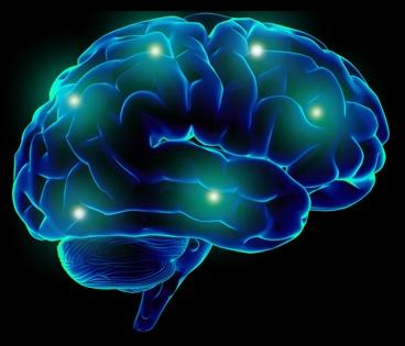 slika mozga